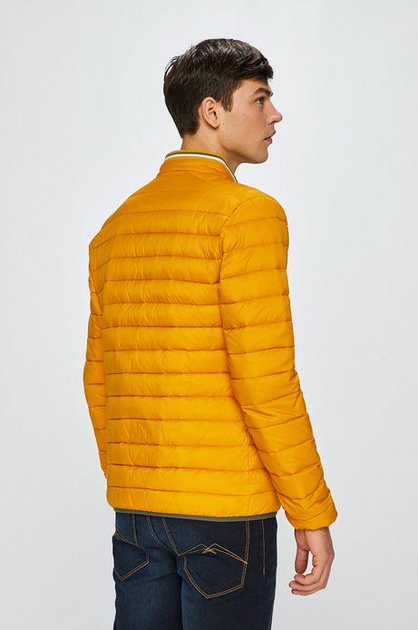 Kurtka męska puchowa żółta