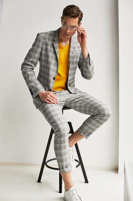 Spodnie męskie w kratkę szare