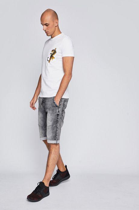 T-shirt męski biały by Michalina Bolach, Falka Art