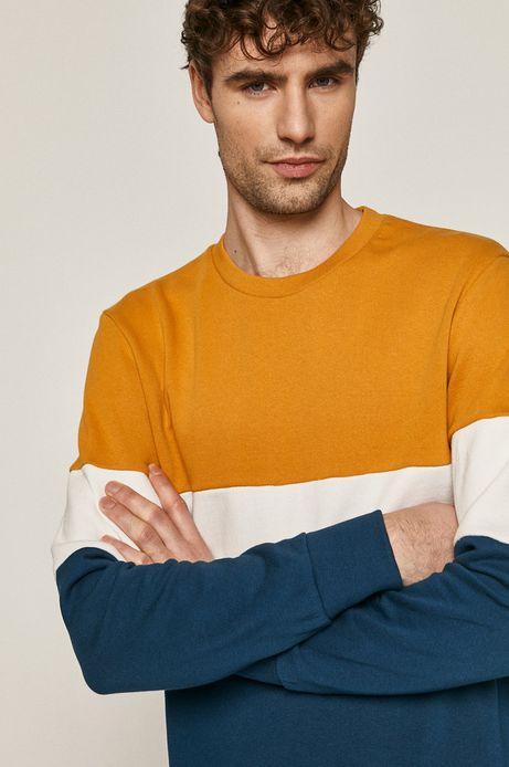 Bawełniana bluza męska w bloki kolorów
