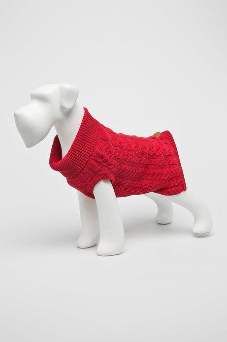 Sweter dla pupila czerwony