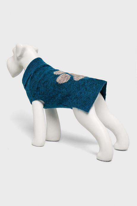 Sweter dla pupila turkusowy