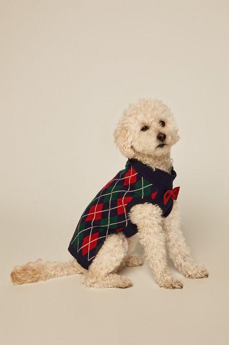 Sweter dla pupila z kokardką