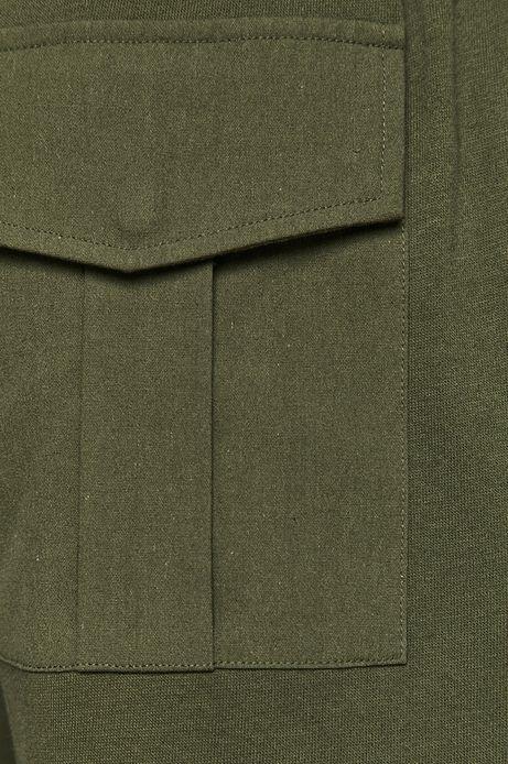 Spodnie męskie Daily Future zielone