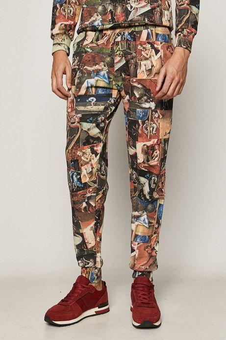 Spodnie męskie dresowe z motywem malarskim