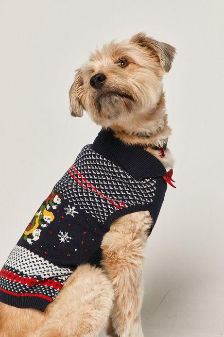 Sweter dla pupila X-mass by Patryk Mogilnicki